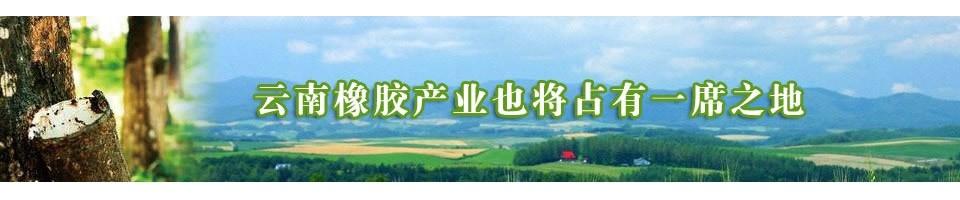 云南橡胶产业也将占有一席之地