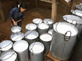 越南或削减橡胶出口关税